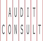 audit consult logo